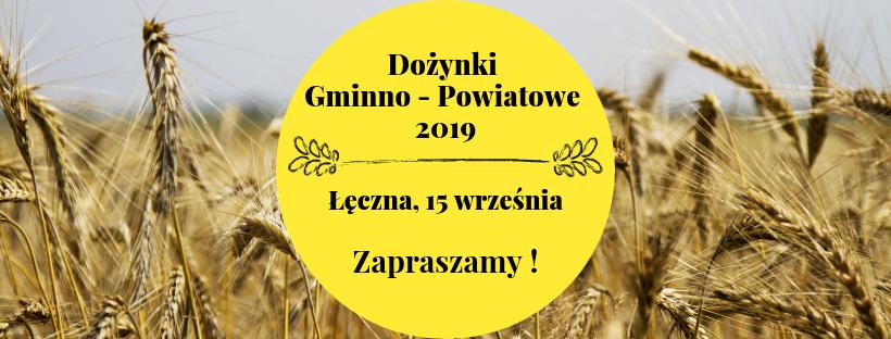 Gminno-Powiatowe Święto Plonów w Łęcznej