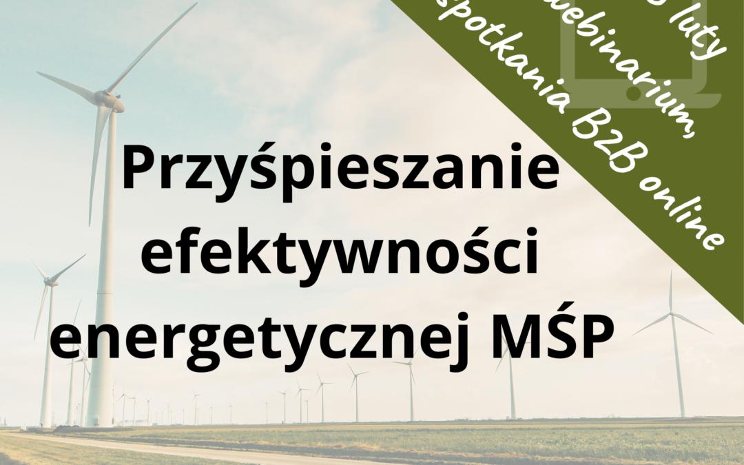 """""""Przyśpieszanie efektywności energetycznej MŚP"""" – webinarium i spotkania B2B online z norweskimi firmami"""